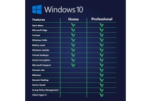 Windows 10 comparison table of Home and Professional versions