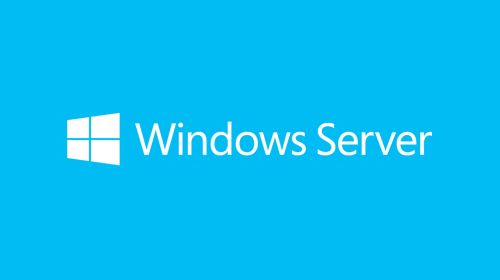 Windows Server License